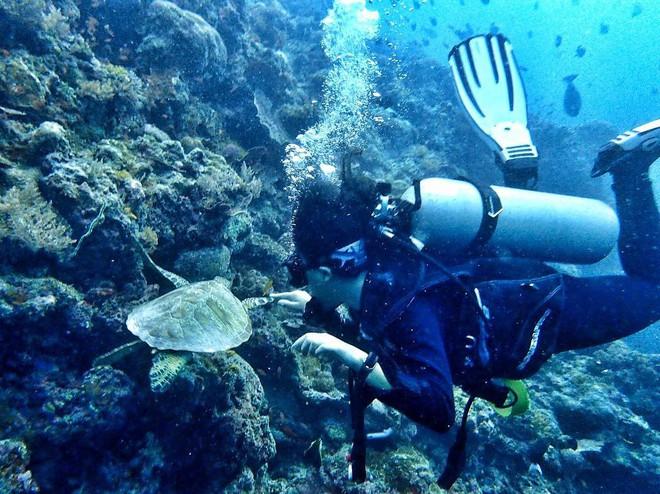 Cô gái Việt đến đảo thiên đường Sipadan bơi cùng cá mập, ở resort hạng sang, ăn buffet xả láng cả tuần với 12 triệu - Ảnh 9.