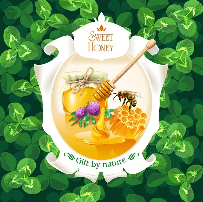 Chỉ đầu tư 1 thìa mật ong mỗi ngày, bạn sẽ nhận lại ngay 43 tác dụng thần kỳ cho nhan sắc và sức khỏe - Ảnh 1.