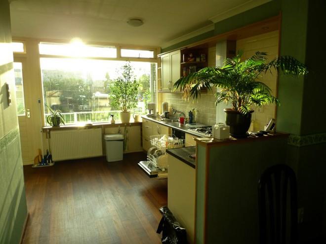 Trồng cây trong nhà bếp vừa trang trí vừa giúp bạn ăn ngon hơn, sống khỏe hơn - Ảnh 2.