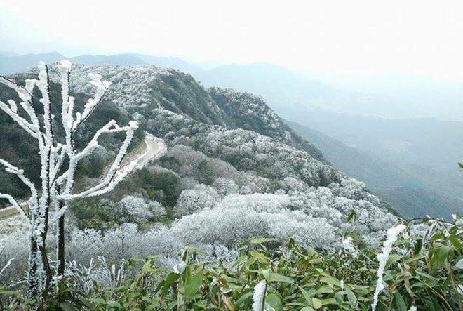 Những hình ảnh đầu tiên về băng giá trên vùng núi Cao Bằng đẹp lung linh như trời Âu - Ảnh 1.