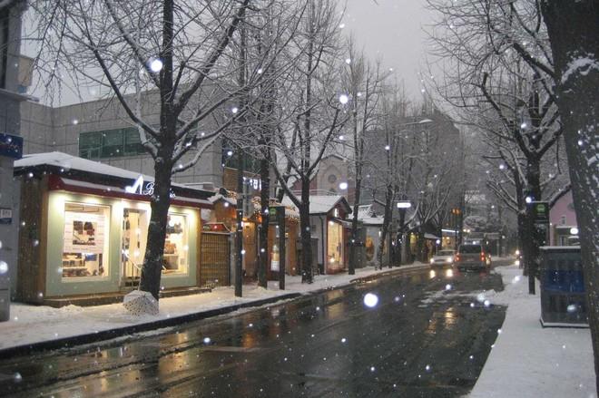 Ngất ngây với những hình ảnh tuyết rơi đẹp lung linh trên khắp thế giới - Ảnh 5.