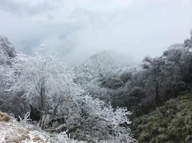 Những hình ảnh đầu tiên về băng giá trên vùng núi Cao Bằng đẹp lung linh như trời Âu - Ảnh 2.