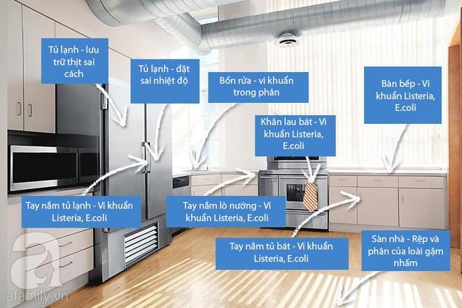 Những vị trí tưởng sạch nhưng chứa đầy vi khuẩn trong bếp nhà bạn - Ảnh 1.