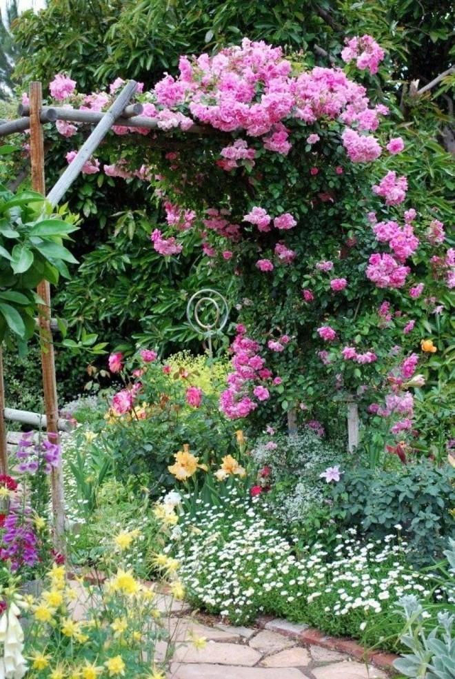 Chiêm ngưỡng vẻ đẹp lộng lẫy của những chiếc cổng nhà tràn ngập hoa - Ảnh 10.