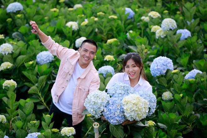 MC Hoàng Linh hạnh phúc như cô gái lần đầu biết yêu trong bộ ảnh cưới tại vườn cẩm tú cầu Đà Lạt - Ảnh 4.