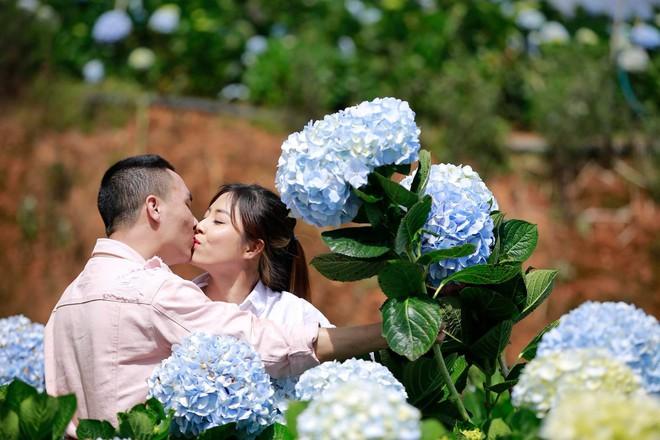 MC Hoàng Linh hạnh phúc như cô gái lần đầu biết yêu trong bộ ảnh cưới tại vườn cẩm tú cầu Đà Lạt - Ảnh 2.