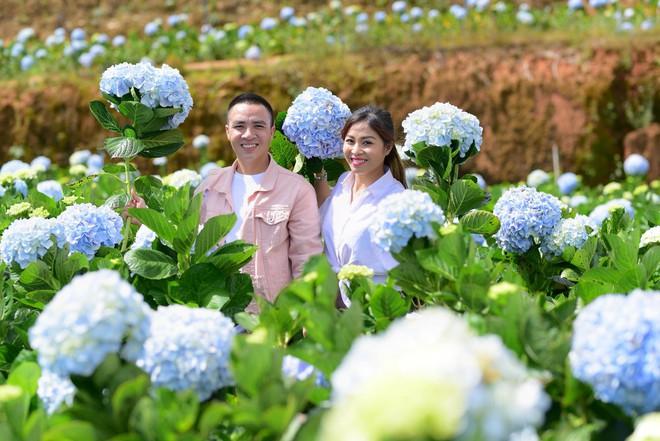 MC Hoàng Linh hạnh phúc như cô gái lần đầu biết yêu trong bộ ảnh cưới tại vườn cẩm tú cầu Đà Lạt - Ảnh 20.