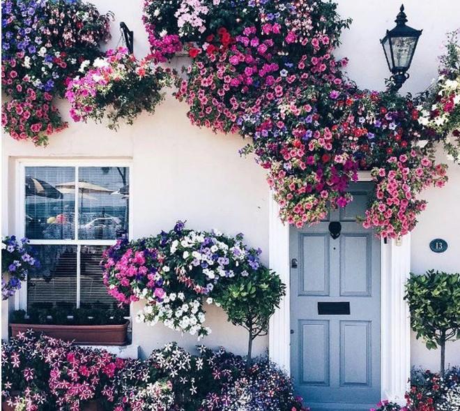 Ngây ngất với những ngôi nhà có khung cửa rộn ràng hoa lá đón xuân về - Ảnh 2.
