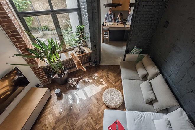 Căn hộ chung cư 35 m2 có gác lửng khiến nhiều người thích mê - Ảnh 1.