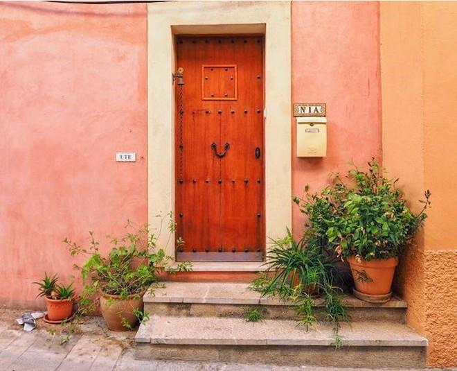 Ngây ngất với những ngôi nhà có khung cửa rộn ràng hoa lá đón xuân về - Ảnh 4.