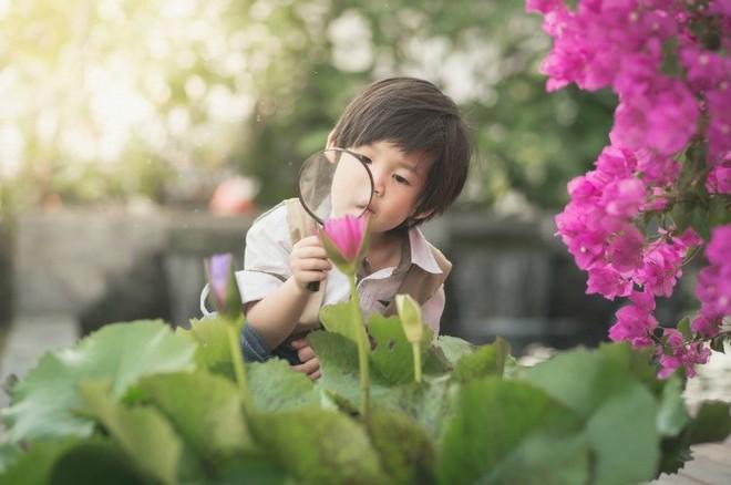 20 dấu hiệu cho thấy con bạn là một đứa trẻ tài năng - Ảnh 1.