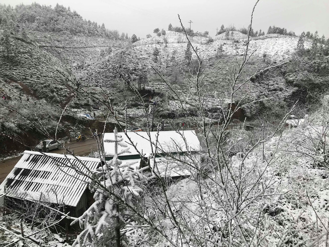 Sa Pa tuyết phủ trắng xóa như ngôi làng cổ tích, du khách ngỡ ngàng vì cảnh tượng quá đẹp - Ảnh 6.