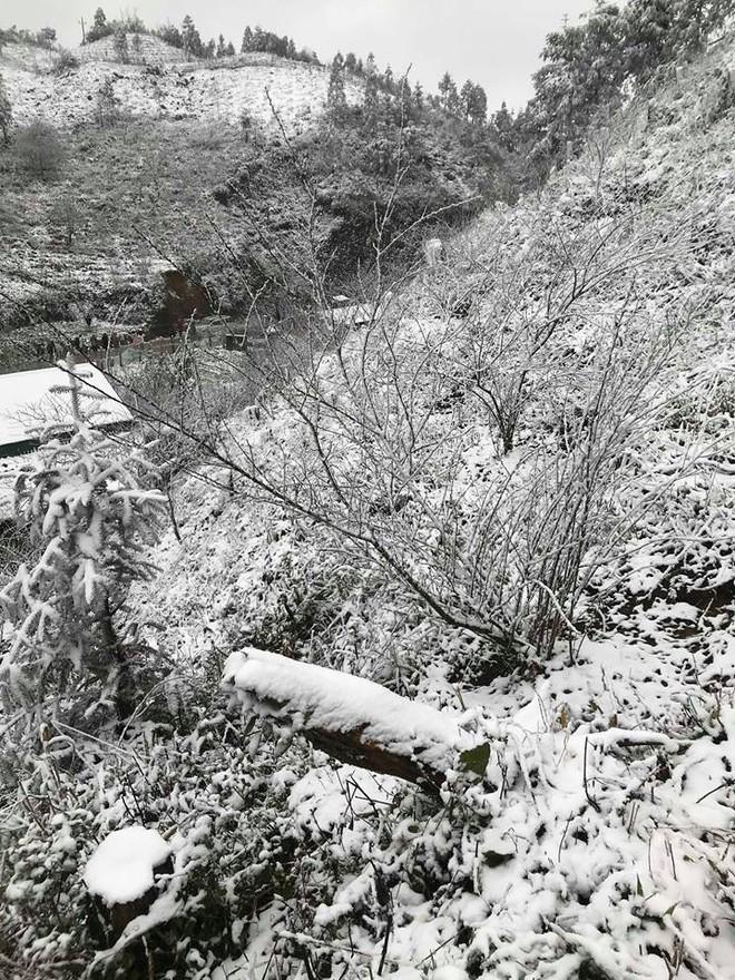 Sa Pa tuyết phủ trắng xóa như ngôi làng cổ tích, du khách ngỡ ngàng vì cảnh tượng quá đẹp - Ảnh 11.