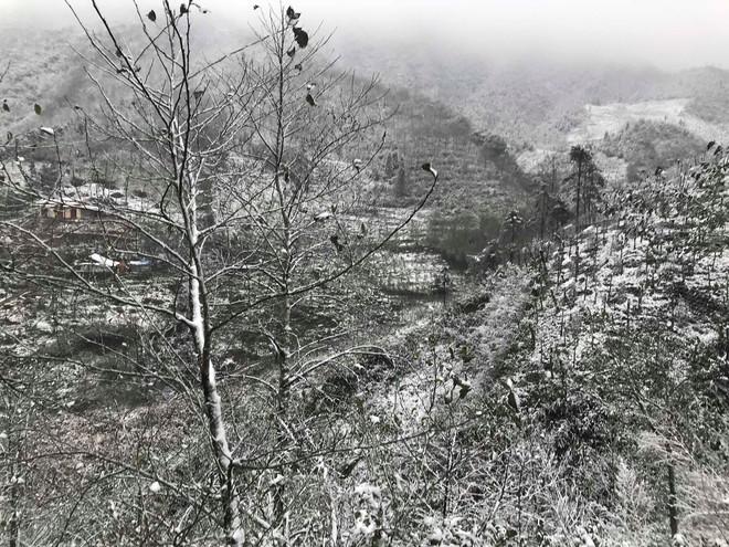 Sa Pa tuyết phủ trắng xóa như ngôi làng cổ tích, du khách ngỡ ngàng vì cảnh tượng quá đẹp - Ảnh 14.