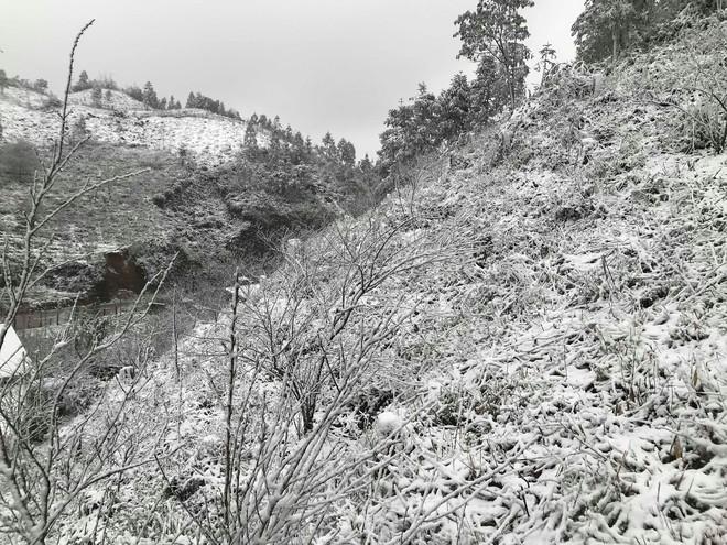 Sa Pa tuyết phủ trắng xóa như ngôi làng cổ tích, du khách ngỡ ngàng vì cảnh tượng quá đẹp - Ảnh 12.