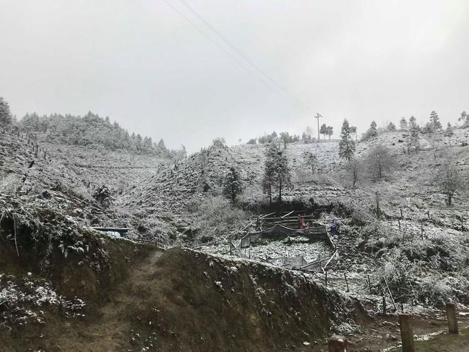Sa Pa tuyết phủ trắng xóa như ngôi làng cổ tích, du khách ngỡ ngàng vì cảnh tượng quá đẹp - Ảnh 13.