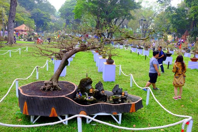Sài Gòn khai màn hội hoa xuân, tiểu cảnh chó khổng lồ hút khách  - Ảnh 9.