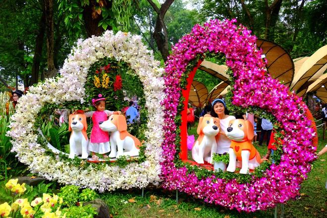 Sài Gòn khai màn hội hoa xuân, tiểu cảnh chó khổng lồ hút khách  - Ảnh 8.