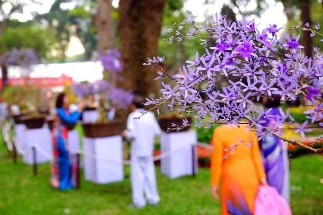 Sài Gòn khai màn hội hoa xuân, tiểu cảnh chó khổng lồ hút khách  - Ảnh 7.