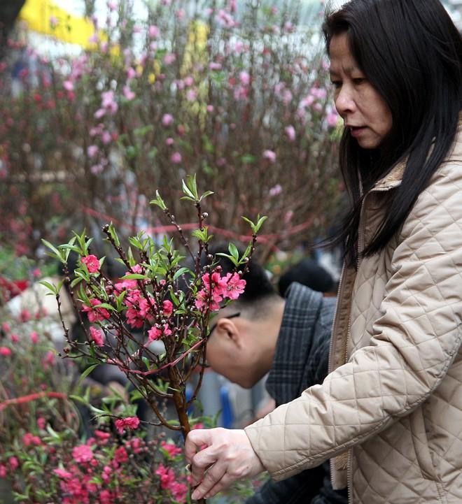 Cảnh nhộn nhịp, huyên náo tại chợ hoa cổ nhất Hà Nội ngày sát Tết - Ảnh 13.