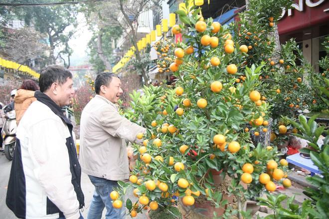 Cảnh nhộn nhịp, huyên náo tại chợ hoa cổ nhất Hà Nội ngày sát Tết - Ảnh 15.