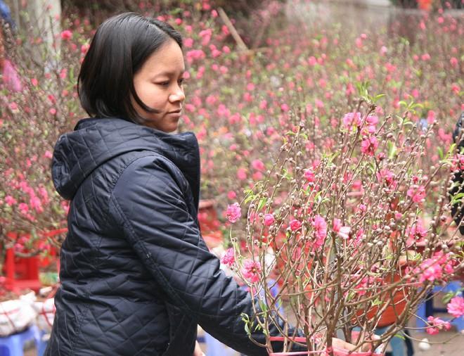 Cảnh nhộn nhịp, huyên náo tại chợ hoa cổ nhất Hà Nội ngày sát Tết - Ảnh 10.