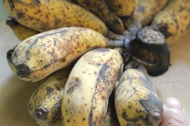 Ngày Tết có thể cúng nhiều loại trái cây nhưng 4 loại này thì tuyệt đối không được đặt lên bàn thờ - Ảnh 1.