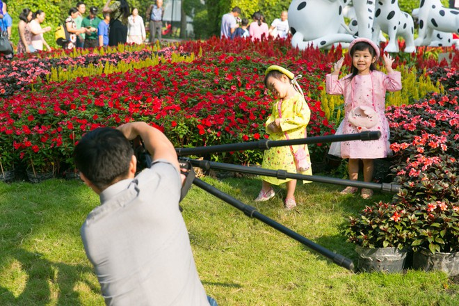 Người Sài Gòn nô nức tham quan đường hoa, hội hoa rực rỡ màu sắc - Ảnh 11.
