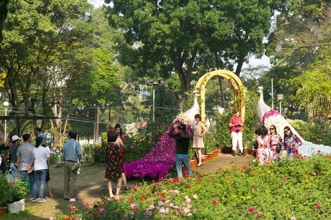 Người Sài Gòn nô nức tham quan đường hoa, hội hoa rực rỡ màu sắc - Ảnh 13.