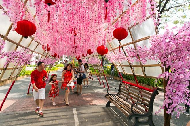Người Sài Gòn nô nức tham quan đường hoa, hội hoa rực rỡ màu sắc - Ảnh 14.