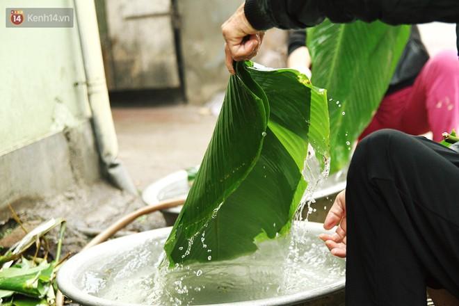 Chùm ảnh: Làng bánh chưng Tranh Khúc tất bật những ngày giáp Tết truyền thống - Ảnh 4.