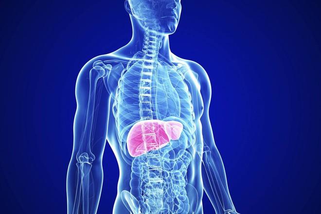 Nếu chế độ ăn của bạn đang có toàn thịt thì nên cẩn thận nguy cơ mắc phải 6 bệnh sau - Ảnh 3.