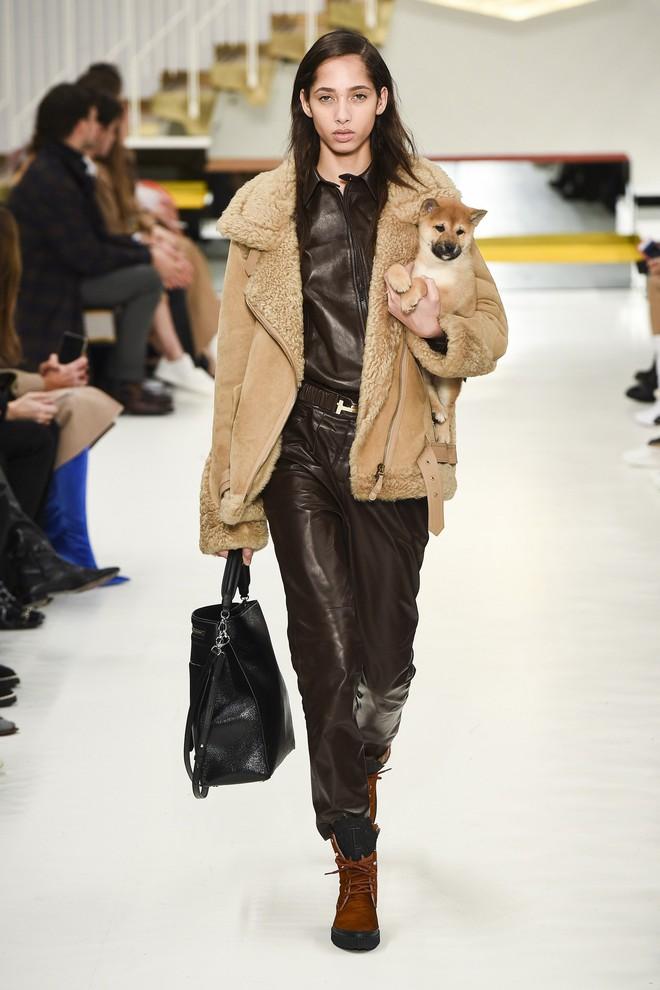 Tuần lễ thời trang Milan: Người mẫu vừa catwalk vừa bế trên tay 1 chú tiểu Tuất cực đáng yêu - Ảnh 5.