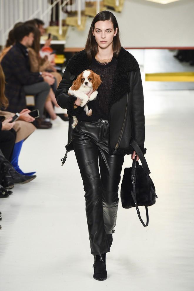Tuần lễ thời trang Milan: Người mẫu vừa catwalk vừa bế trên tay 1 chú tiểu Tuất cực đáng yêu - Ảnh 3.