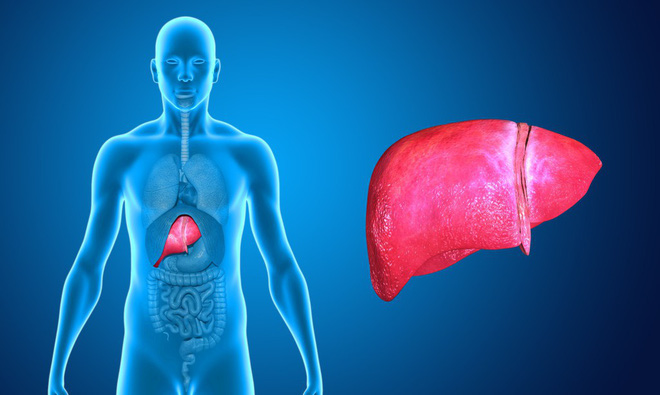 Đây là 6 bộ phận trên cơ thể dễ mắc ung thư nhất mà bạn không nên xem thường - Ảnh 2.