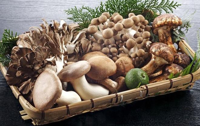 Tăng cường bổ sung các loại thực phẩm giàu vitamin B2 để thúc đẩy quá trình trao đổi chất trong cơ thể - Ảnh 1.