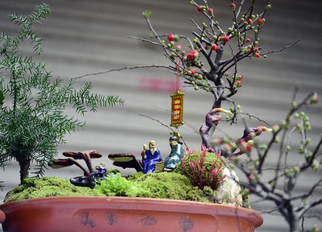 Hà Nội: Nấm linh chi thành bonsai nhỏ xinh hút khách mua về chưng Tết - Ảnh 4.