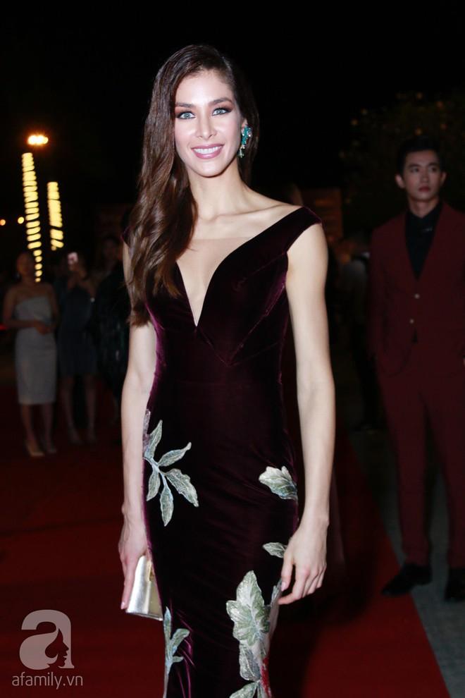 Hoa hậu Hoàn vũ 2008 Dayana Mendoza khoe vẻ đẹp tuyệt sắc, Mai Phương Thúy lộng lẫy như công chúa trên thảm đỏ chung kết Hoa hậu Hoàn vũ Việt Nam - Ảnh 3.
