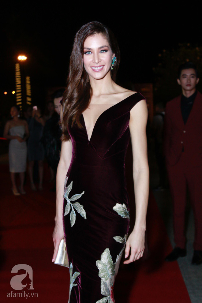 Hoa hậu Hoàn vũ 2008 Dayana Mendoza khoe vẻ đẹp tuyệt sắc, Mai Phương Thúy lộng lẫy như công chúa trên thảm đỏ chung kết Hoa hậu Hoàn vũ Việt Nam - Ảnh 4.