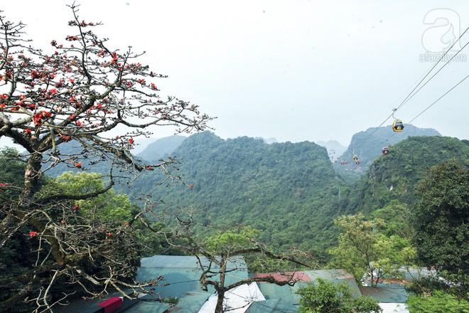 Tháng 3 về, hoa gạo thắp sáng núi rừng chùa Hương - Ảnh 5.