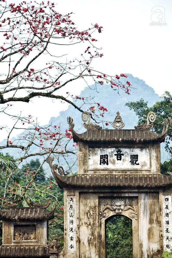 Tháng 3 về, hoa gạo thắp sáng núi rừng chùa Hương - Ảnh 12.