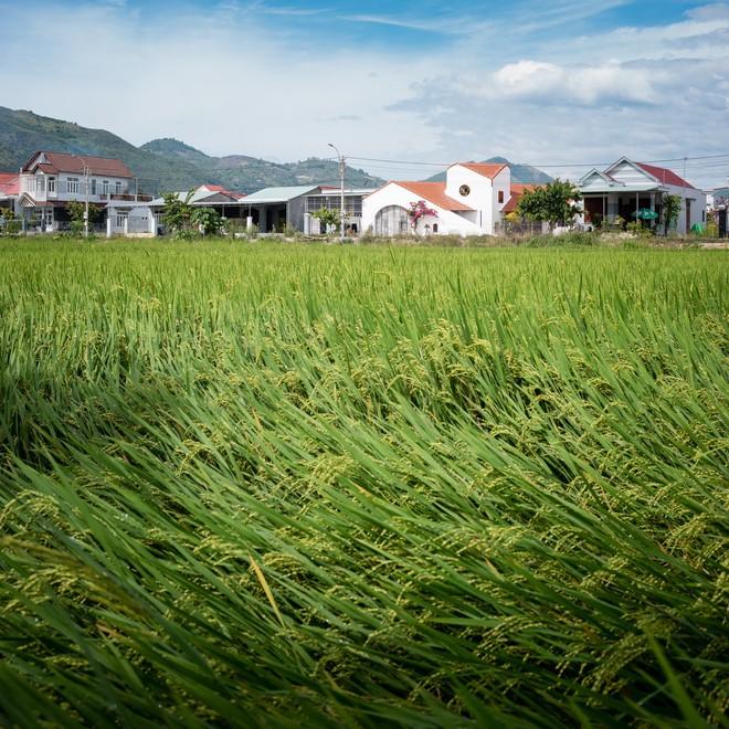 Ngôi nhà quê đẹp như tranh vẽ, khiến người thành phố nhìn cũng phát ghen ở Nha Trang - Ảnh 2.