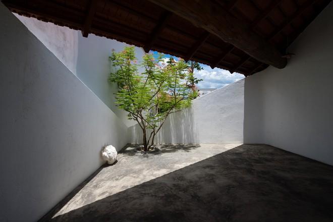 Ngôi nhà quê đẹp như tranh vẽ, khiến người thành phố nhìn cũng phát ghen ở Nha Trang - Ảnh 10.