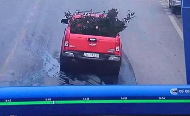 Công an trích xuất camera truy tìm chiếc xe ô tô vào vườn trộm cây hoa hồng 20 tuổi - Ảnh 1.