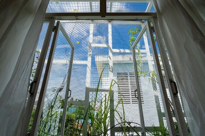 Ngôi nhà 50m² trong hẻm nhỏ đẹp chẳng kém resort ở Sài Gòn - Ảnh 17.