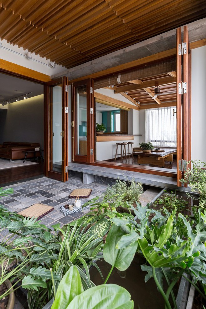 Căn hộ chung cư rộng, nhiều cây và thoáng như nhà vườn dưới mặt đất ở Cầu Giấy, Hà Nội - Ảnh 4.