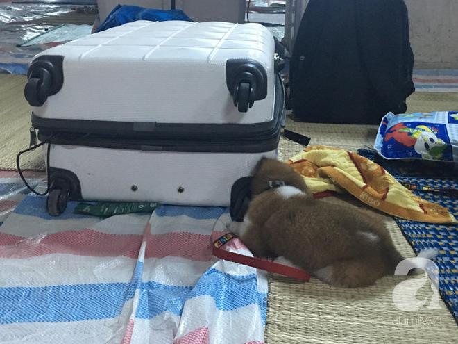 Sau 1 đêm thức trắng vì cháy, hàng chục người dân chung cư Carina lại nằm vạ vật trong nhà tạm lánh, dùng đồ từ thiện - Ảnh 5.