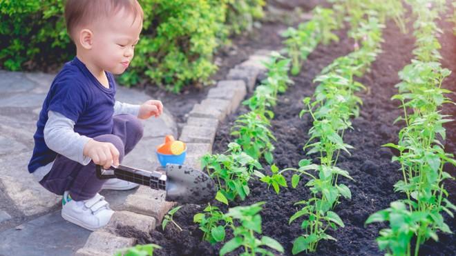 8 hoạt động cực thú vị bố mẹ có thể trải nghiệm cùng con trong những ngày xuân ấm áp - Ảnh 3.