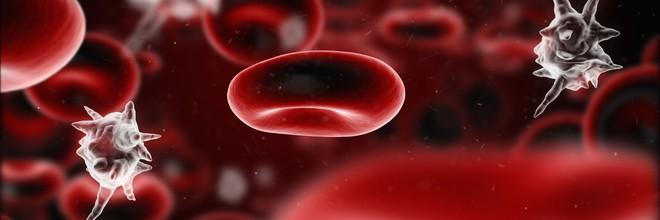 Nhiễm trùng máu -