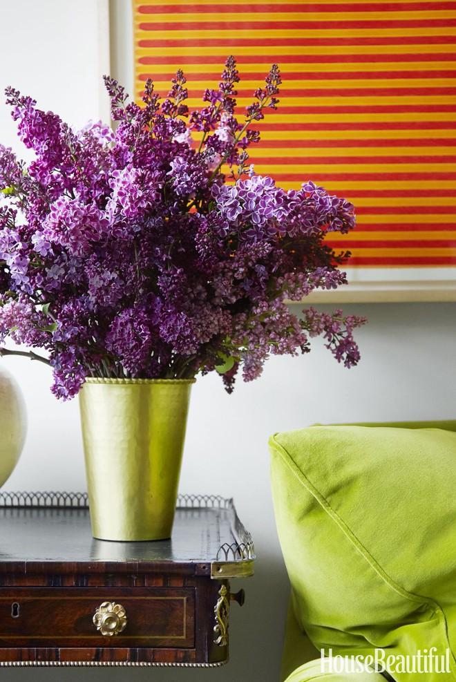 Cách chọn hoa phù hợp cho mỗi phòng trong nhà  - Ảnh 17.